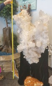 Extra Large Giant Singing Angel Wing Quartz Crystal Cluster with Record Keepers Height