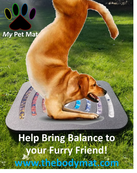 Help Bring Harmonic Balance to your Furry Friend with My Pet Mat by The Body Mat